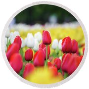 Tulips By Jared Windmuller - Tulip - Red -  Round Beach Towel