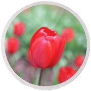Tulips In Spring 4 Round Beach Towel