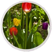 Tulips In The Garden Round Beach Towel