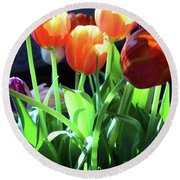 Tulips In The Light Round Beach Towel