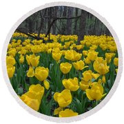 Tulips In The Woods Round Beach Towel