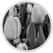Tulips 4 Round Beach Towel