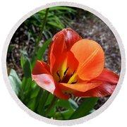 Tulips Wearing Orange Round Beach Towel