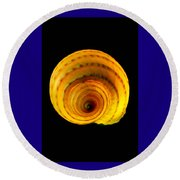 Tun Shell Round Beach Towel