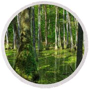 Tupelo Trees In Mississippi  Round Beach Towel