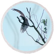 Turkey Vulture Drying Wings After Rain     Indiana Summer Round Beach Towel