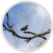 Turkey Vulture On Dead Tree Round Beach Towel