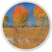 Turning Of Leaves Round Beach Towel