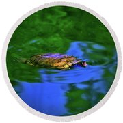 Turtle Coming Up For Air 003 Round Beach Towel