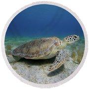 Turtle Cove Round Beach Towel