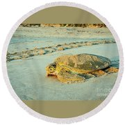 Turtle Day Round Beach Towel