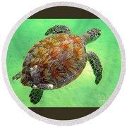 Turtle Day In Titusville,florida Round Beach Towel