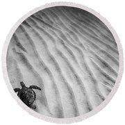 Turtle Ridge Round Beach Towel by Sean Davey