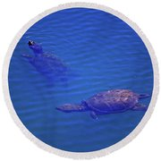 Turtles At The Lily Pond 001 Round Beach Towel