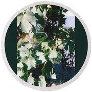 Tuscan Grapes Photograph Round Beach Towel