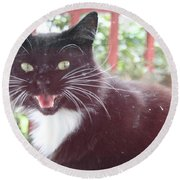 Can You Hear Me Meow? Round Beach Towel