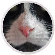 Tuxedo Cat Whiskers And Pink Nose Round Beach Towel