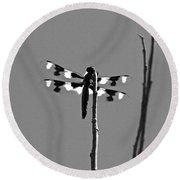 Twelve-spot Skimmer Dragonfly-bw Round Beach Towel
