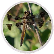 Twelve Spotted Skimmer Dragonfly Round Beach Towel