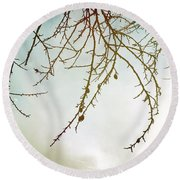 Twigs And Winter Sky Two Round Beach Towel