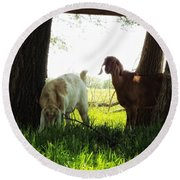 Twilight On The Farm Round Beach Towel