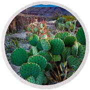 Twilight Prickly Pear Round Beach Towel