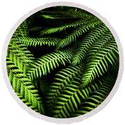 Twilight Rainforest Fern  Round Beach Towel