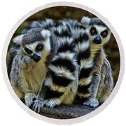 Twin Lemurs Round Beach Towel