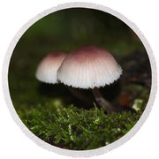 Twin Peaks - Pink And White Mushroom Duo Round Beach Towel