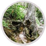 Twisted Tree Smoky Mountains Round Beach Towel