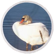 Twisted  White Swan Round Beach Towel