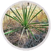 Twisted Yucca Round Beach Towel