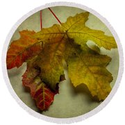 Two Autumn Leaves Round Beach Towel