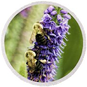 Salvia With Bees Round Beach Towel