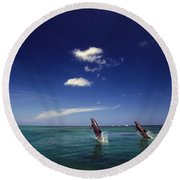 Two Bottlenose Dolphins Dancing Across Round Beach Towel