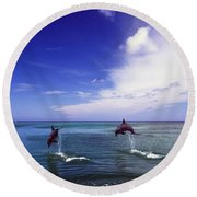 Two Bottlenose Dolphins Round Beach Towel