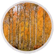 Two Colorado High Country Autumn Horses Round Beach Towel