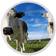 Two Cows Round Beach Towel