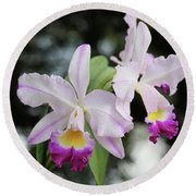 Two Delicate Orchids Round Beach Towel