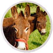 Two Donkeys Round Beach Towel