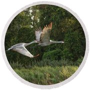 Two Florida Sandhill Cranes In Flight Round Beach Towel