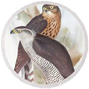 Two Goshawks Round Beach Towel