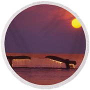 Two Humpback Whales Round Beach Towel
