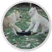 Two Lion Cubs Playing Round Beach Towel