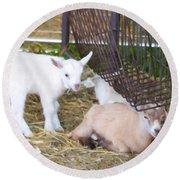 Two Little Goatlings Round Beach Towel