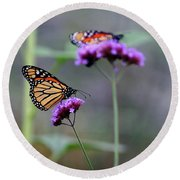 Two Monarchs On Verbena Round Beach Towel