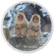 Two Monkeys Round Beach Towel