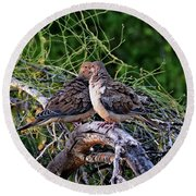 Two Mourning Doves H14 Round Beach Towel