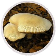 Two Mushrooms Round Beach Towel