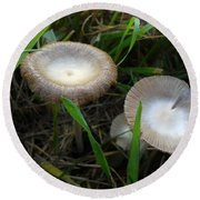 Two Mushrooms In Grass Round Beach Towel